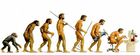 evolution-of-man-and-wine